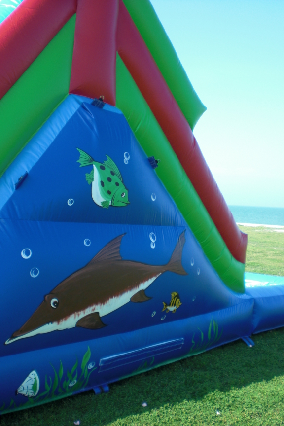 16 foot Dolphin Water Slide